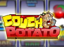 Играйте в виртуальный автомат Домосед с множителями без регистрации